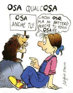 L'Associazione OSA